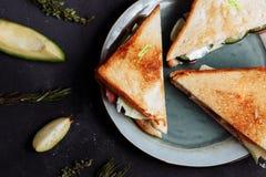 新鲜的自创三明治、齐尔诺背景与feijoa和鲕梨特写镜头顶视图  库存图片