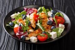 新鲜的自创开胃菜沙拉用蓝莓,希腊白软干酪, ch 免版税库存图片