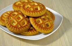 新鲜的自创曲奇饼用杏干和酸奶干酪在一块白色板材 图库摄影