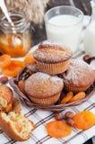 新鲜的自创杏子松饼 库存图片
