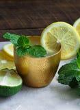 新鲜的自创柠檬水 免版税库存照片