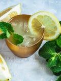 新鲜的自创柠檬水 库存照片