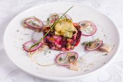 新鲜的自创甜菜根沙拉香醋用鲱鱼在一个白色碗钓鱼 传统俄国食物 图库摄影