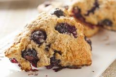 新鲜的自创蓝莓早餐烤饼 图库摄影