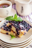 新鲜的自创蓝莓蛋糕的部分 库存照片