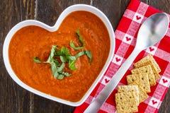 新鲜的自创蕃茄汤 免版税库存照片