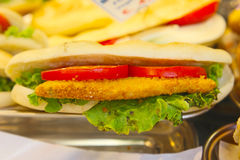 新鲜的自创鸡意大利人panini的分类 库存照片