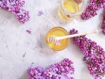 新鲜的自然在灰色具体背景的蜂蜜淡紫色花 库存照片