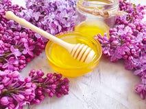 新鲜的自然蜂蜜淡紫色开花花营养可口在灰色具体背景 免版税库存图片