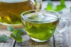 新鲜的自然绿色在玻璃的蜜蜂花清凉茶 免版税库存照片