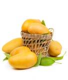 新鲜的芒果和叶子在篮子 免版税库存照片