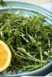 新鲜的芝麻菜在木碗, rucola离开 在木老背景的芝麻菜rucola 免版税库存照片