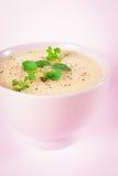 新鲜的花椰菜和硬花甘蓝汤 库存照片