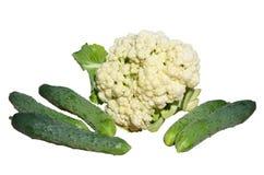 新鲜的花椰菜和黄瓜 库存图片
