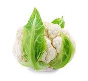新鲜的花椰菜 库存图片
