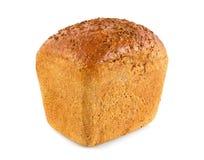 新鲜的芳香有机黑麦面包用香料 库存照片