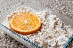 新鲜的芹菜沙拉用桔子和酸奶 库存照片