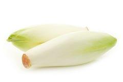 新鲜的苦苣生茯 免版税库存照片