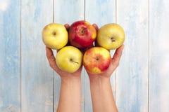 新鲜的苹果在手中和在蓝色木桌上 库存照片
