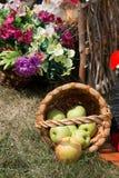 新鲜的苹果从篮子落 免版税库存照片