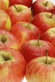 新鲜的苹果 免版税库存照片