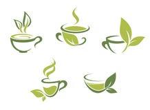 新鲜的茶和绿色叶子 免版税库存图片