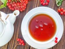 新鲜的茶 免版税库存照片