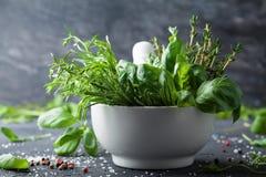 新鲜的草本和香料传统意大利烹调的 罗斯玛丽、蓬蒿、麝香草、龙篙、胡椒和盐 库存照片