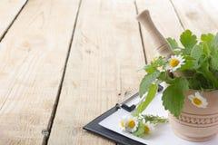 新鲜的草本和医疗剪贴板在木桌上 免版税库存照片