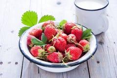 新鲜的草莓和牛奶 库存照片