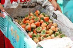 新鲜的草莓在新鲜市场上 免版税图库摄影