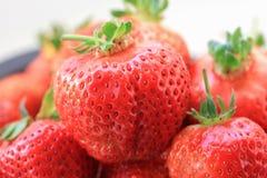 新鲜的草莓特写镜头 库存照片