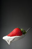 新鲜的草莓酸奶 免版税库存图片