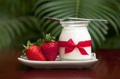 新鲜的草莓酸奶 图库摄影
