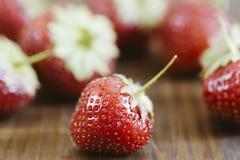 新鲜的草莓 图库摄影