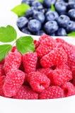 新鲜的莓和蓝莓 库存照片
