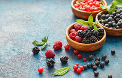 新鲜的莓果的混合与叶子的在织地不很细金属背景 免版税库存照片