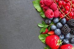 新鲜的莓果边界  免版税库存照片
