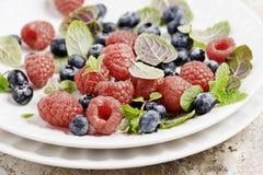 新鲜的莓果 免版税图库摄影