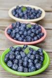 新鲜的莓果 库存图片