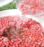 新鲜的莓水 图库摄影