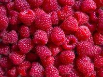 新鲜的莓的样式, design_的背景 库存照片