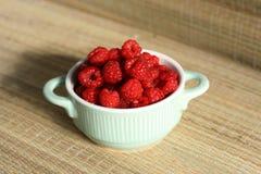 新鲜的莓 免版税图库摄影