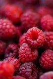 新鲜的莓 免版税库存照片