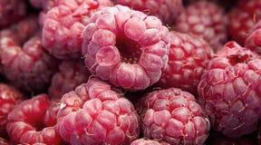 新鲜的莓 库存图片