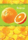 新鲜的菜单桔子 向量例证