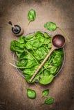 新鲜的菠菜叶子和木匙子在土气木背景 库存照片
