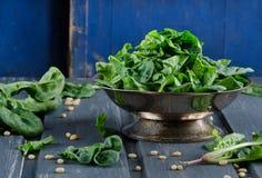 新鲜的菠菜 库存图片