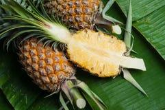 新鲜的菠萝 免版税库存图片