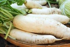 新鲜的萝卜在市场上 库存照片